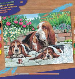 Peinture à numéros senior - Bassets au repos