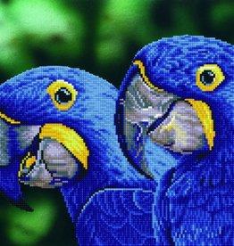 Diamond Dotz Diamond Dotz - Blue Hyacinth Macaws