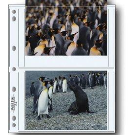 Printfile Printfile 5x7 Sleeves 25 pk