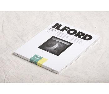 Ilford 11x14x10 FB Matt
