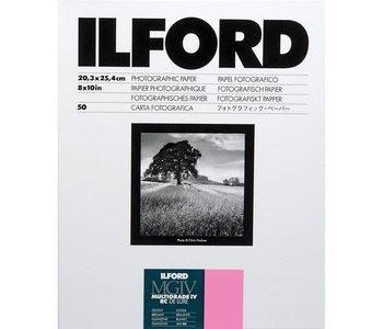 Ilford 8x10x50 RC Glossy