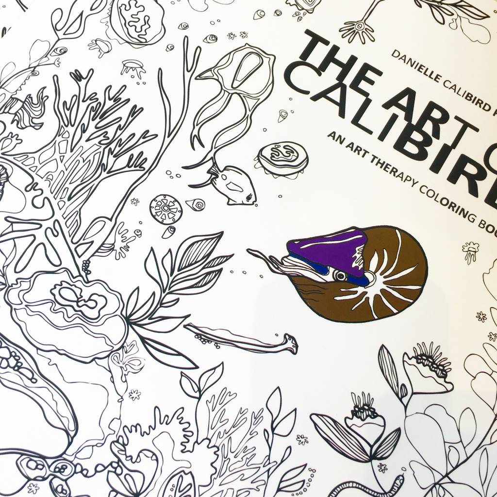 Calibird The Art of Calibird Coloring Book