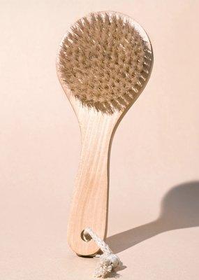 Midnight Paloma Body Dry Brush