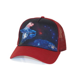 Climb On Dancing Bear Trucker Hat