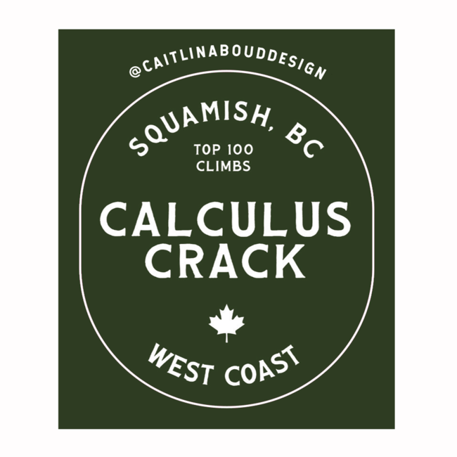Caitlin Aboud Design Sticker Calculus Crack