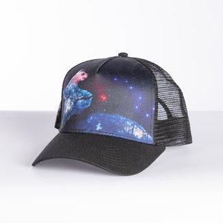 Climb On Dancing Bear Trucker Hat