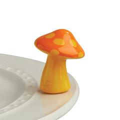 Products tagged with funki fungi mini attachment