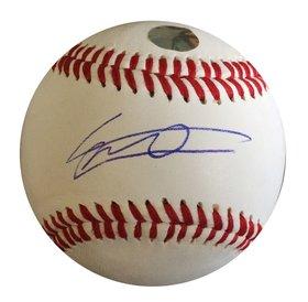 Rawlings Rawlings Vladimir Guerrero RTD1 sign replica ball