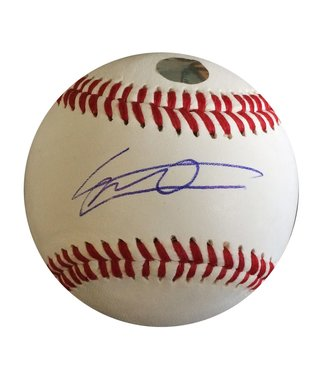 Rawlings Rawlings Vladimir Guerrero RTD1 sign replica ball