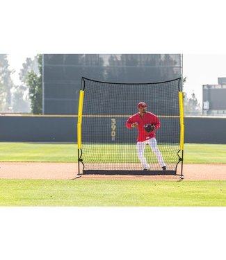 Easton Easton Infield/Outfield training net