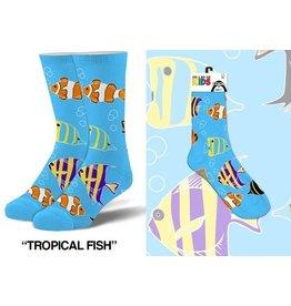 Cool Socks Cool Tropical Fish Kids 4-7 Socks
