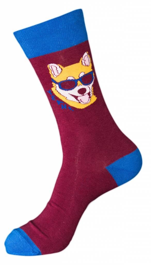 Sock it to Me Men's Hipster Dog Socks