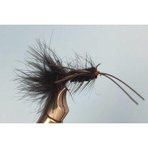 Galloup's Warbird