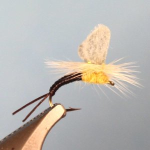 Etha Wing Emerger - PMD #14