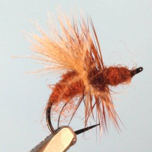469632155b1 CDC Fly Ant - Red  14