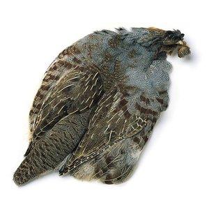 Wapsi Fly, Inc Hungarian Partridge Skins