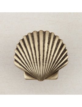 Small Scallop Brass Knob