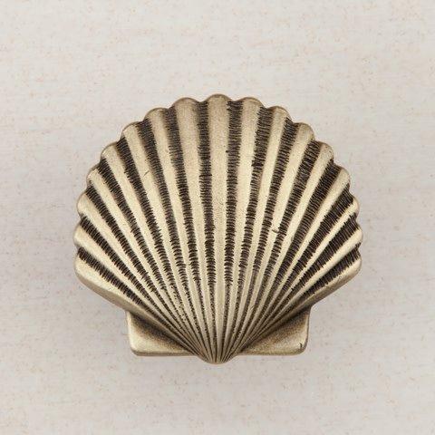 Small Scallop Brass Knob
