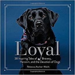 Loyal Devotion of Dogs