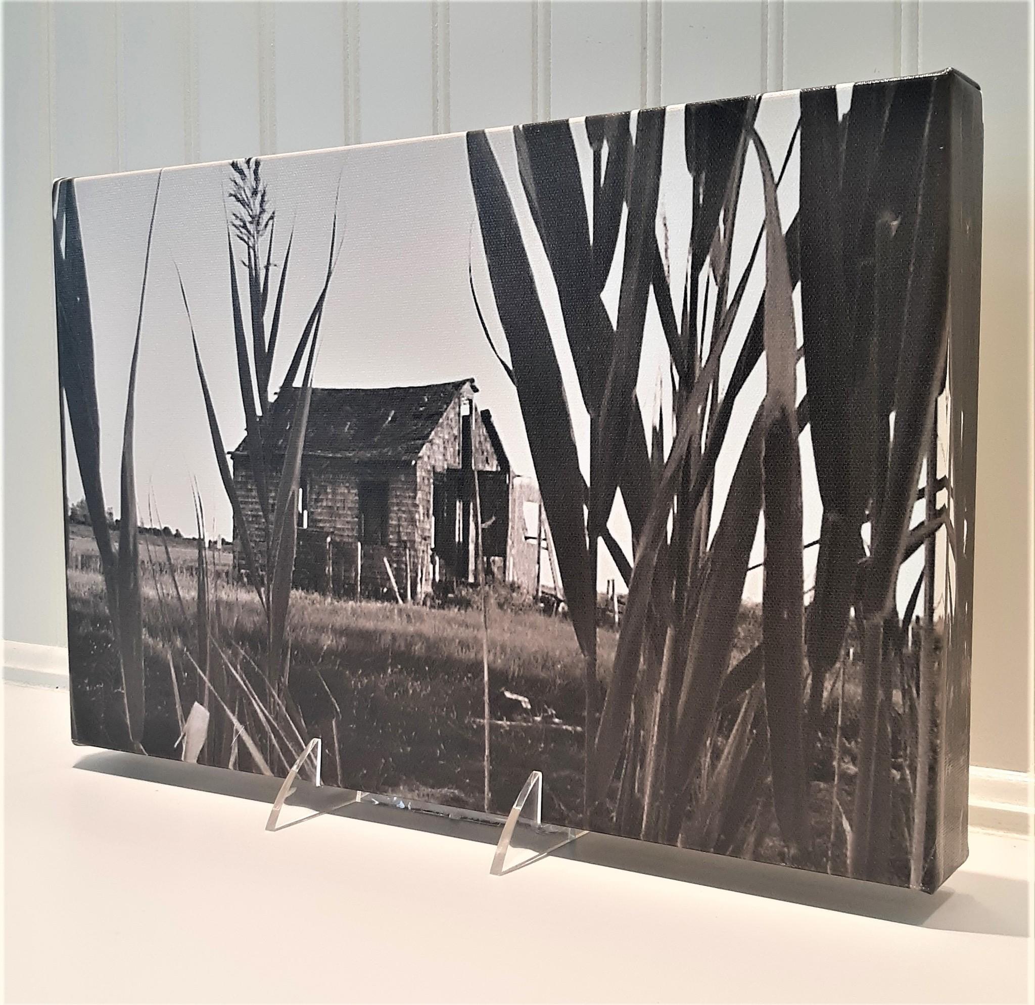 9x14 Shack Sideways Black and White