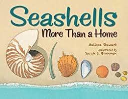 Seashells More than a Home