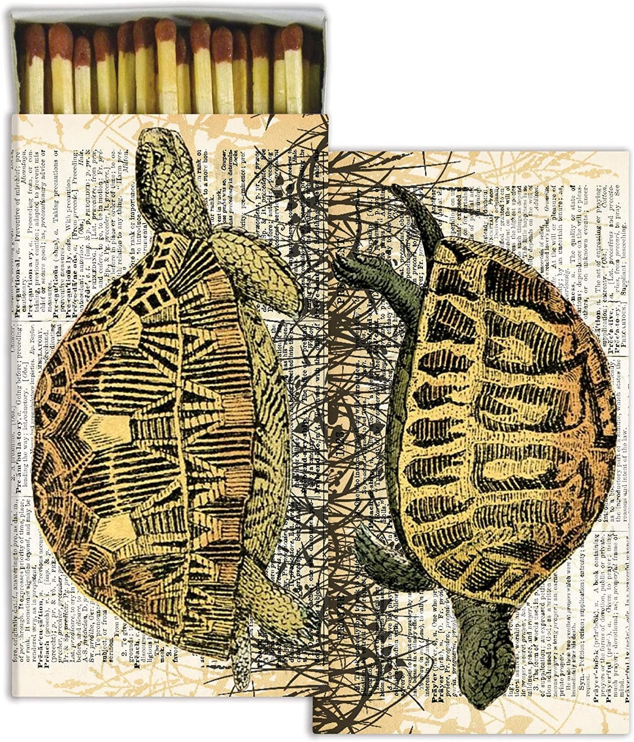 Turtle Matches