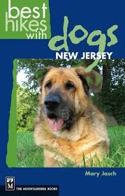 Best Hikes with Dogs: NJ