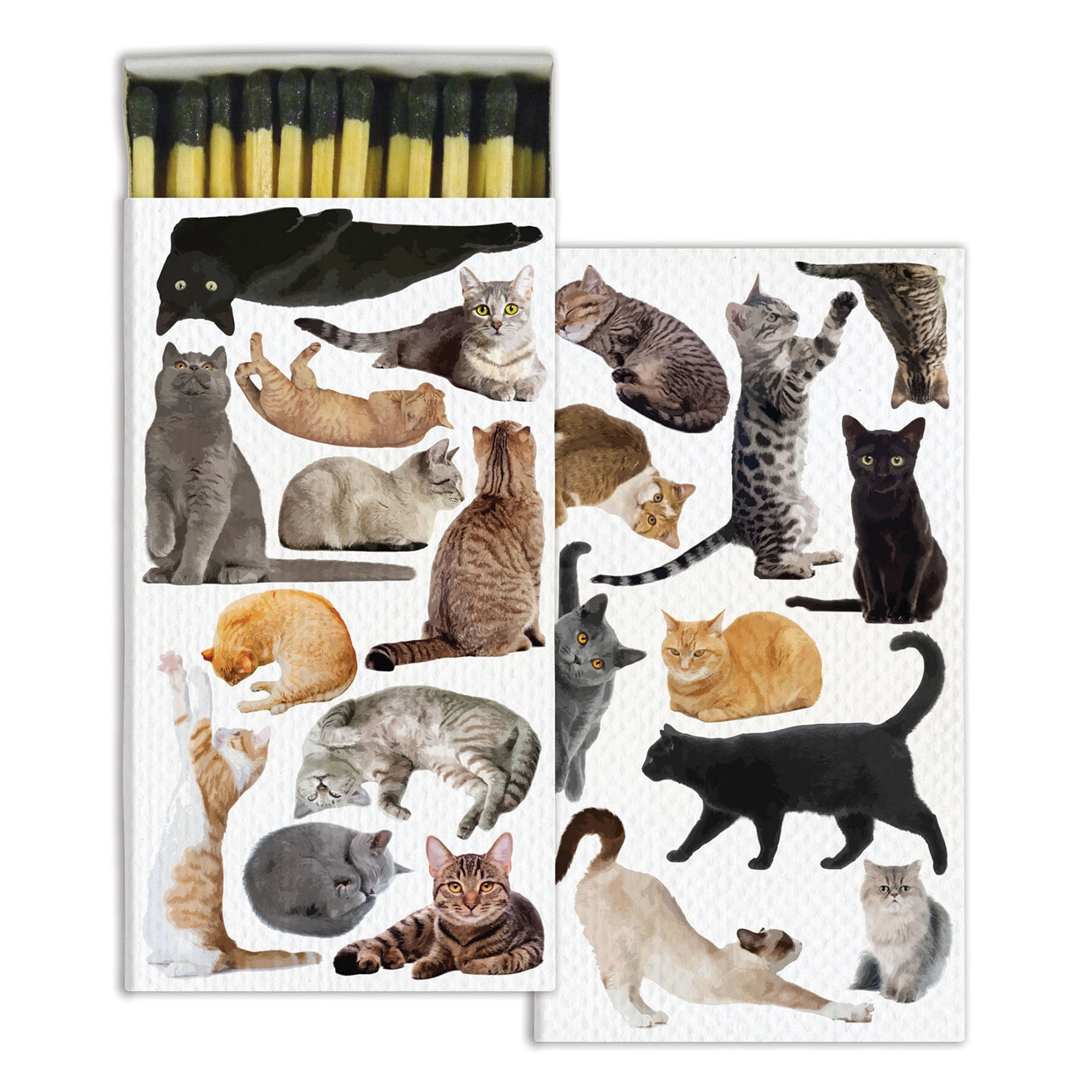 Cat Pack Matches