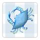 4 Piece Coaster Set - Blue Crab
