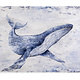 Whale Song 60x40