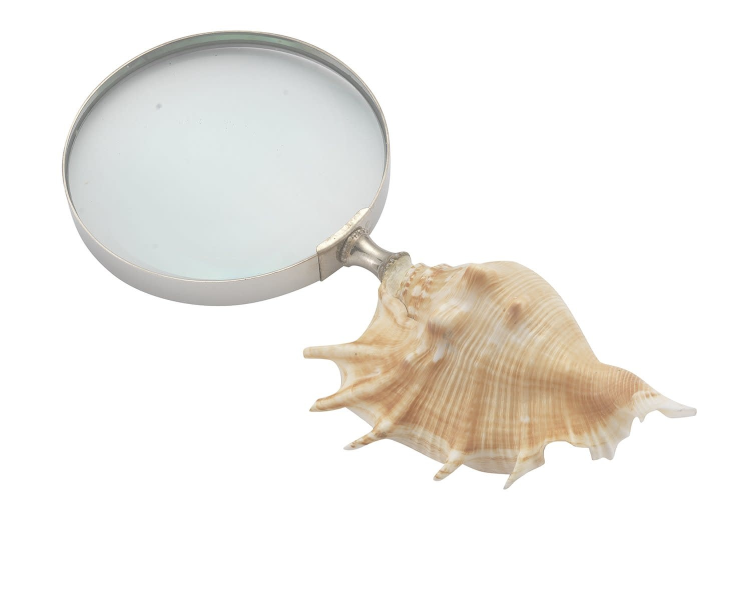 Striated Magnifier