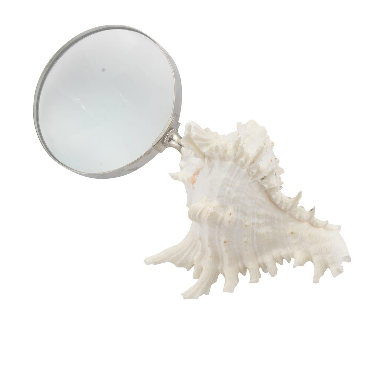 Mini Shell Magnifier