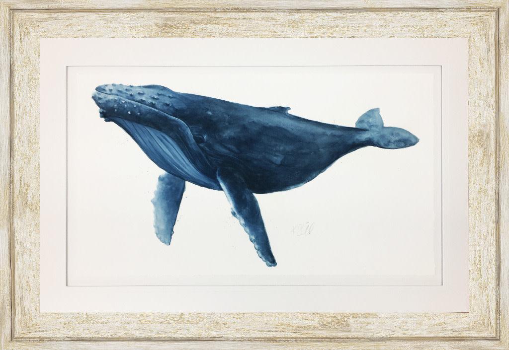 Blue Whale Full  42x28