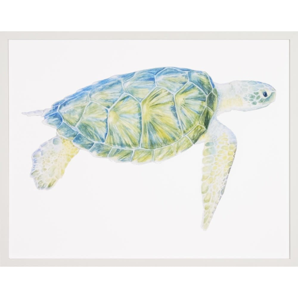 Sea Turtle A 26x23