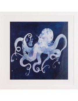 Octopus Shadow B 23x23