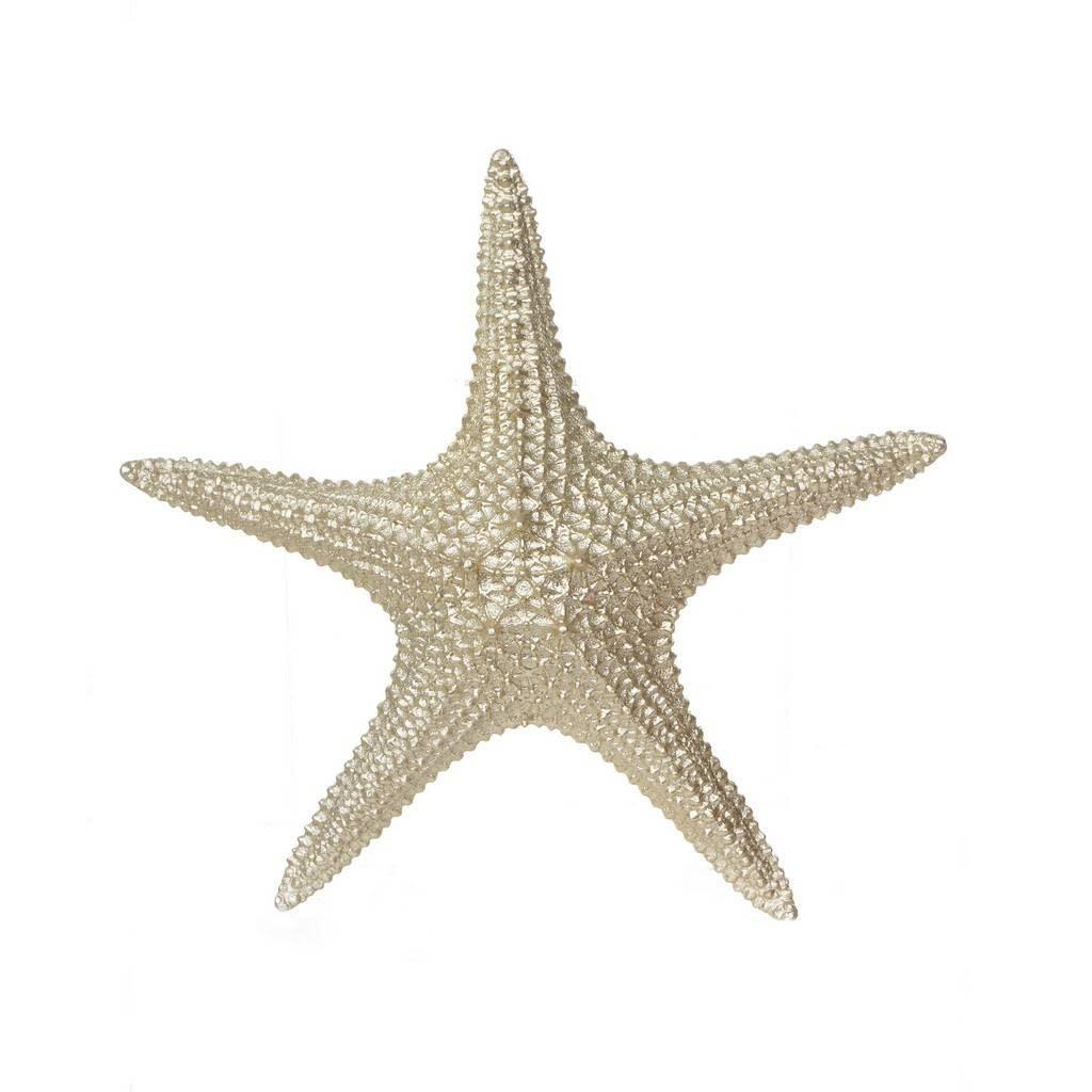"Resin 3"" Starfish Figurine, Champagne"