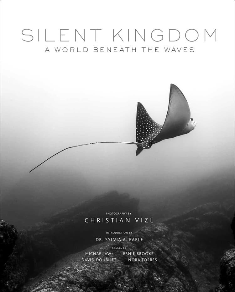 Silent Kingdom