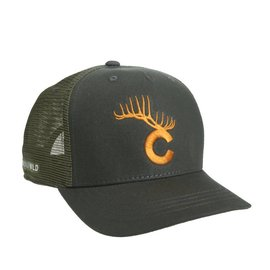 Rep Your Water Rep Your Water - Colorado Tines Hat