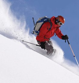 Syndicate HIGH PERFORMANCE - Ski DEMO / RENTAL PKG - Adult (IN STORE ONLY)