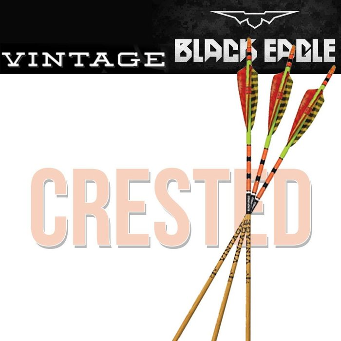 Black Eagle Crested and Fletched Vintage Arrows