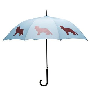 San Francisco Umbrella Cavalier King Charles Blue/Marsala