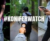 Les looks #koniferwatch du mois : septembre 2017