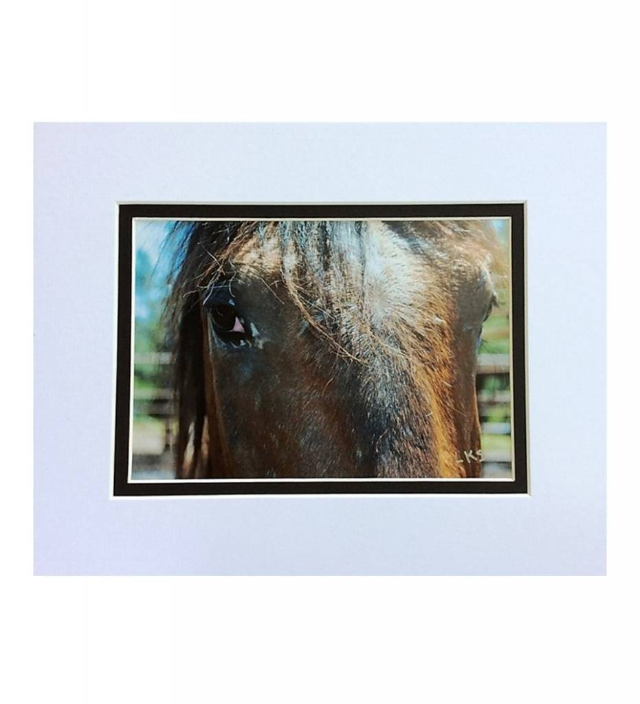 "*LS - CSC001 Chahta Horse Series ""Issuba"""