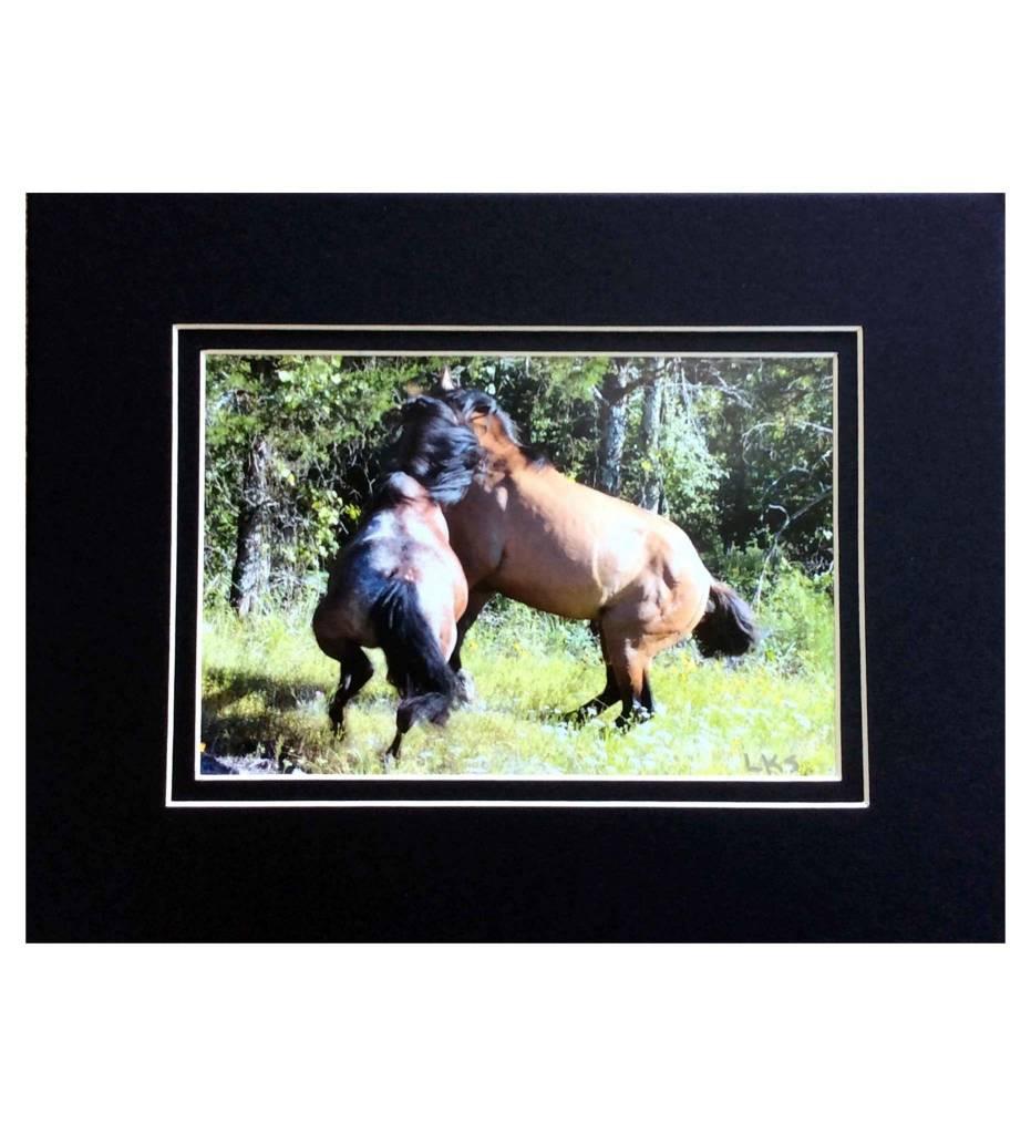 "*LS - CSC004 Choctaw Horse Series ""War"""