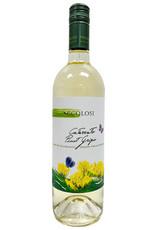 Italy Ecolosi Pinot Grigio Cataratto