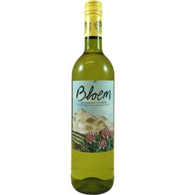 South Africa Bloem Suider Bloem White