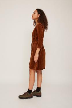 Rita Row Velvet Dress in Brown