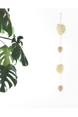 Natalie Joy Monstera Deliciosa 4 Leaf Vine