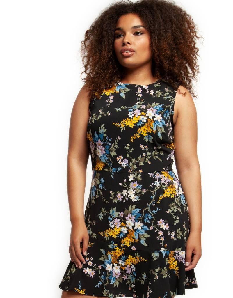 Dex Floral Fit & Flare Dress
