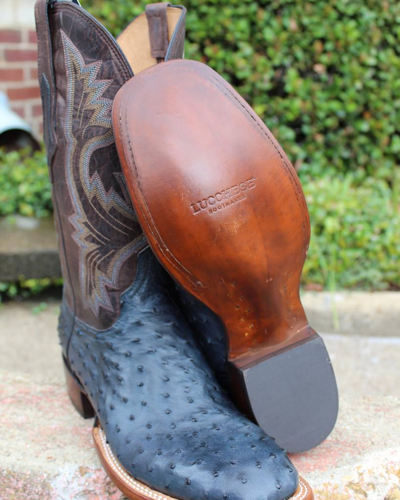 Lucchese Lucchese Black Blueberry Full Quill Ostrich